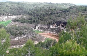 COVES ROGES